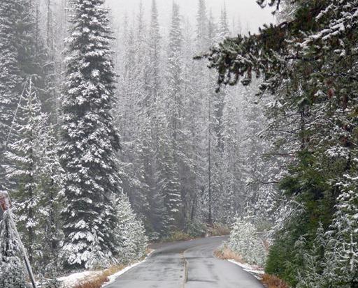 Cascade Mtns Drive4