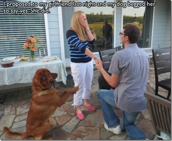 awesome-pet-owners-8