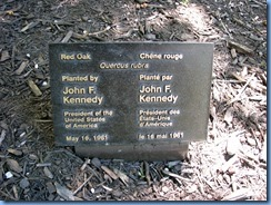 6453 Ottawa 1 Sussex Dr - Rideau Hall - red oak planted by John F Kennedy