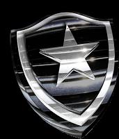 Brasileirão 2013 - Confira todos os jogos do Botafogo