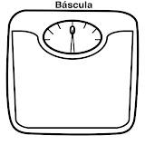 bscula.jpg