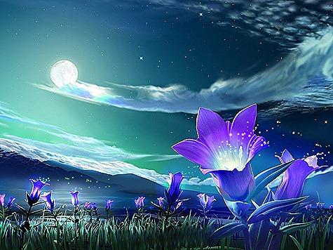 Magical_Flowers_Wallpaper_lne6h