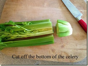 Cut off the bottom of the celery