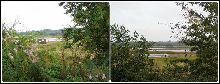 4 Nature reserve