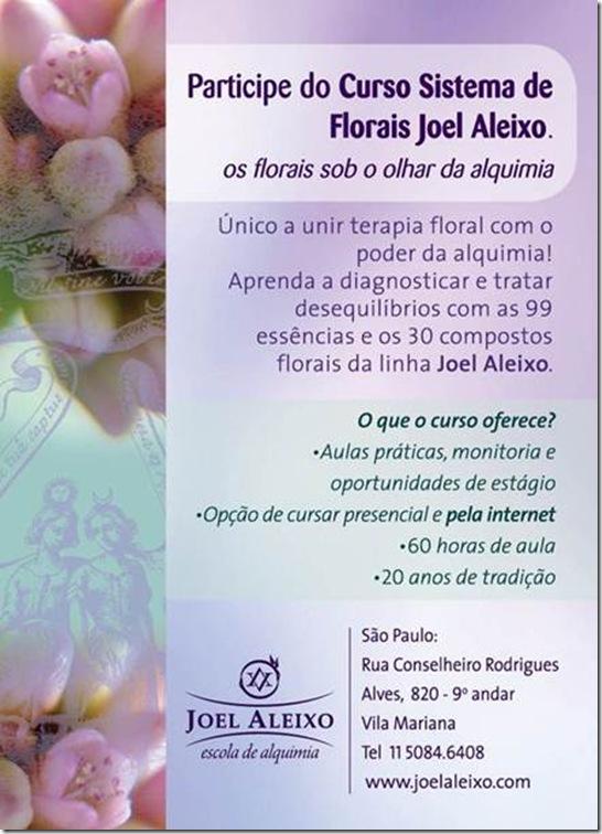 Joel Aleixo