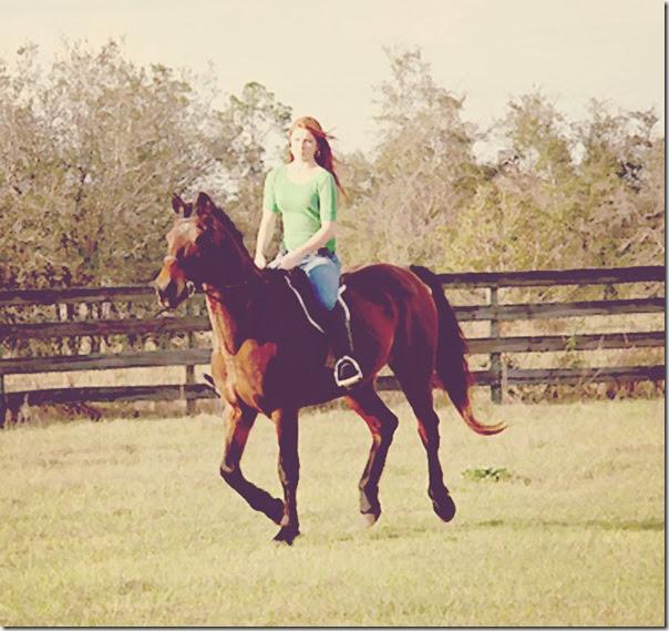 022314 horse kayla painting