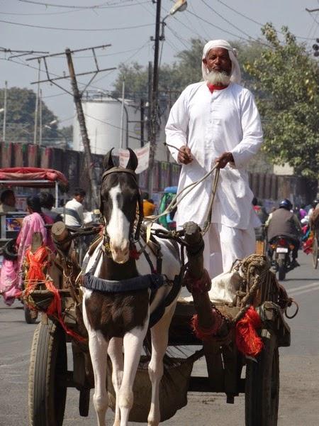 Man riding cart