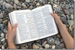 7744043-female-hands-holding-open-bible