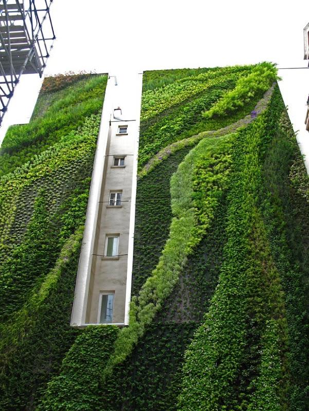vertical garden by patrick blanc 3