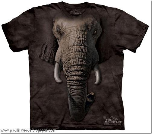 camisetas de Montain-22