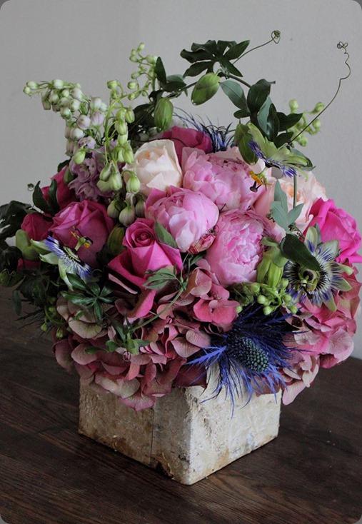 passionflower vine 1003188_364380243691409_797977903_n sachi rose