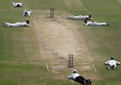 Interesting moments directly from Cricket field