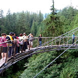 another bridge at the Capilano Suspension Bridge in North Vancouver, British Columbia, Canada