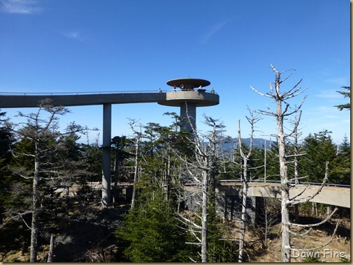 Clingmans dome_017