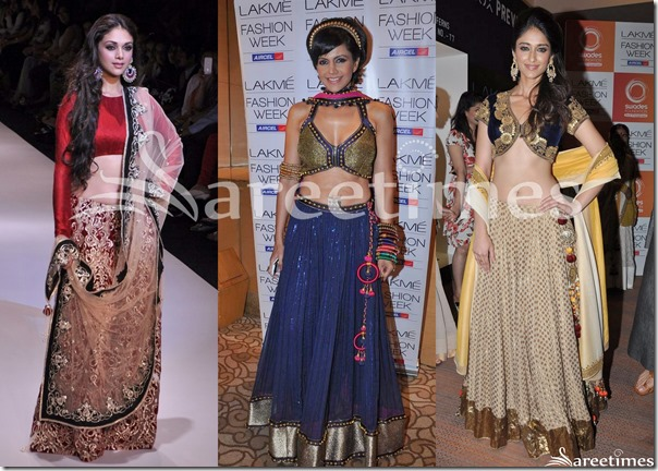 Lehenga_Designs_March_2013(2)