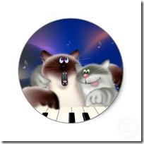 gato pianista blogdeimagenes (24)