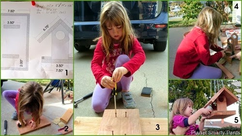 Steps in Building a Birdhouse