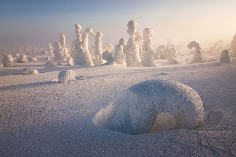 Sentinels-of-the-Arctic-4