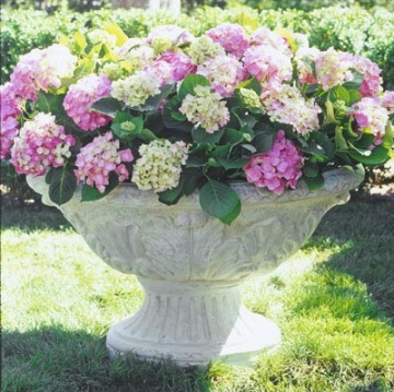 There's something sumptuous about this white planter. I think it's paired perfectly with hydrangeas. (treillage.com)