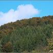 2012-baran-dorota-092.jpg