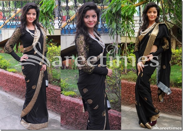 Latest_Black_Sarees_2013 (16)