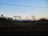 Curunumbeng in the distance seen from just west of Ruteng (Dan Quinn, July 2013)