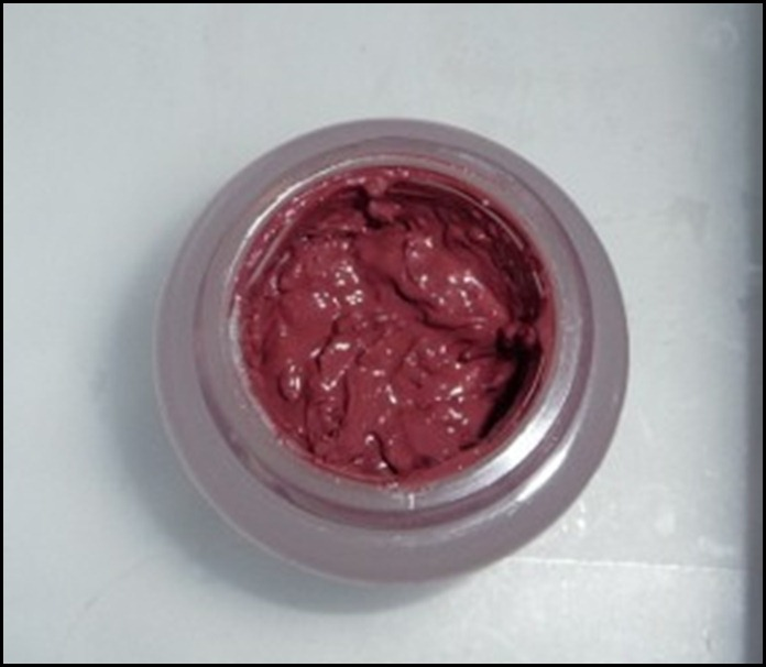 Lipstick 022 (800x600)