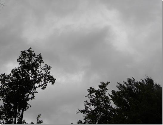 September 2, 2012 019