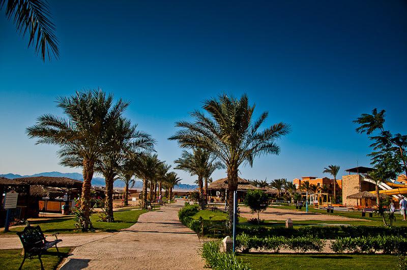 Отель Caribean World Resort Soma Bay. Хургада. Египет. Аллея вдоль пляжа, упирающаяся в бар.