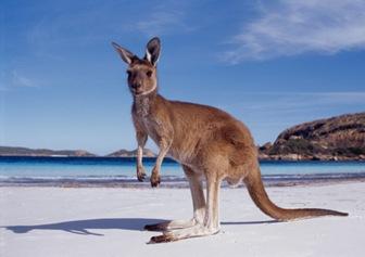 cambio-climatico-australia