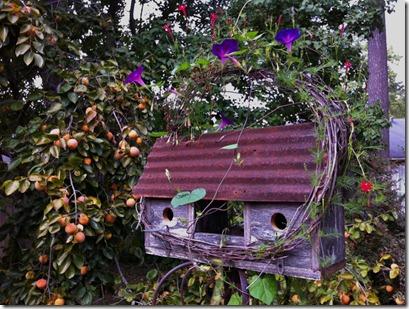 birdhouse (1024x765)