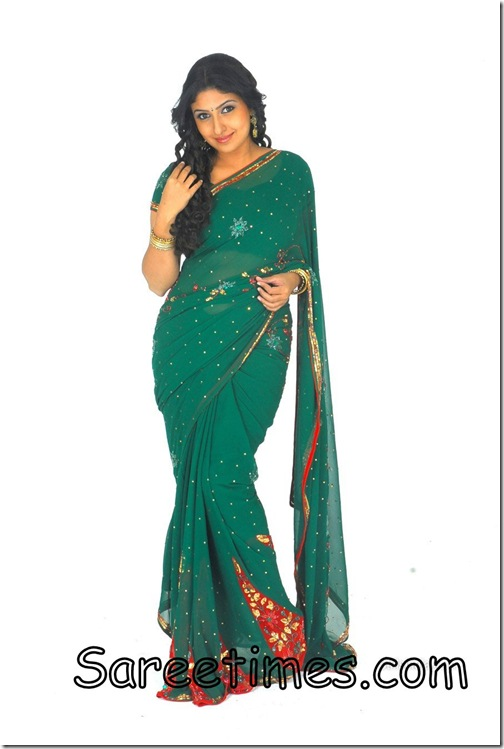 Monika_Green_Designer_Saree