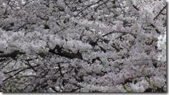 螢幕截圖 2014-06-04 14.37.45