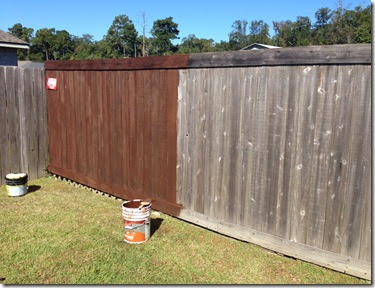Running & Fence Staining (6)