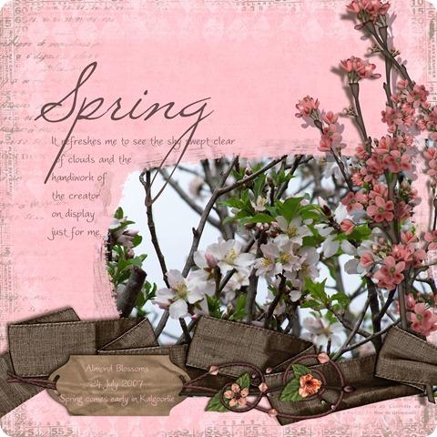 20080429 Almond Blossom photobook