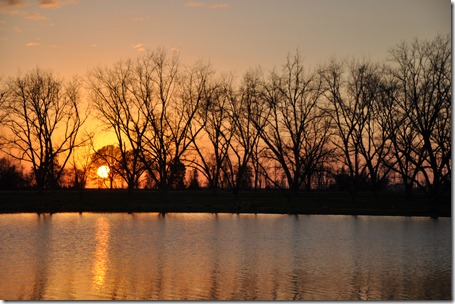 daylight savings the pond sunset  (14)