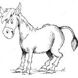 burro-t2870.jpg
