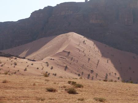 Duna de nisip din Wadi Rum