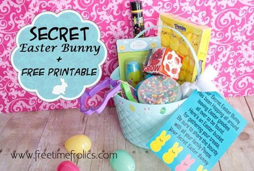 secret bunny 2