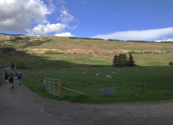 Into Kirkton Farm.jpg