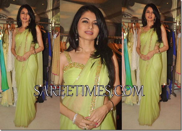 Bhagyashree_Green_Shimmer_Saree