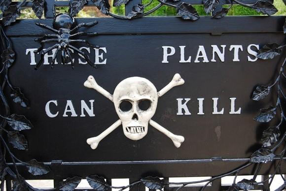 poison-garden-1[6].jpg