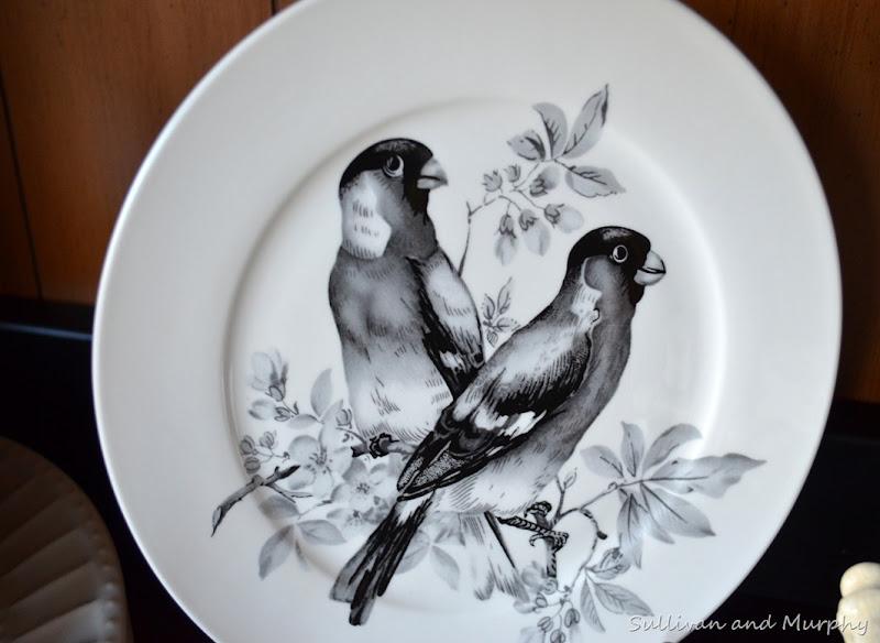 new birds2