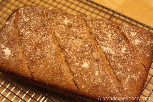 einkorn-levain00006