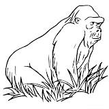 gran-gorila1.jpg
