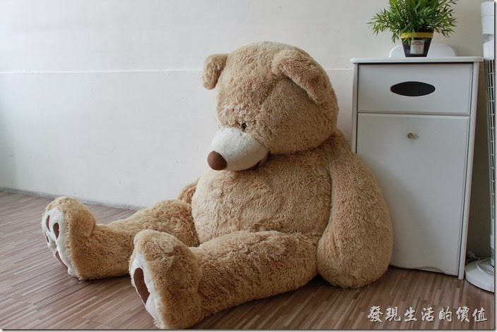 台南-Season_Cafe。二樓靠馬路的窗邊有個和室木地板,就是這隻大熊讓很多女生的尖叫聲。