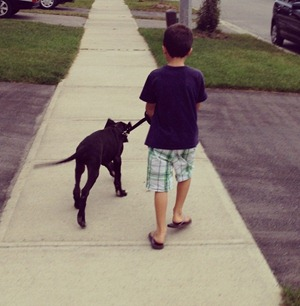 boy and his dog[5]