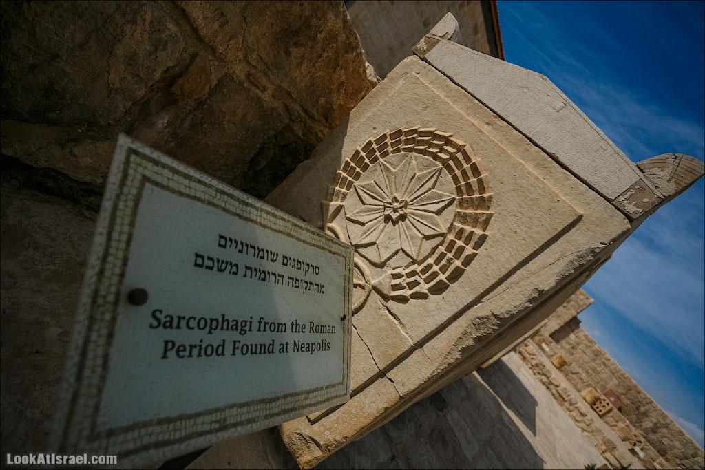 Мозаики от «Доброго самаритянина» (israel  путешествия иудея и самария и интересно и полезно выставки музеи фестивали  20130215 good samaritan mosaic 008 5D3 8353)