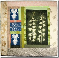 Sue Reno, Skunk and Garlic Mustard