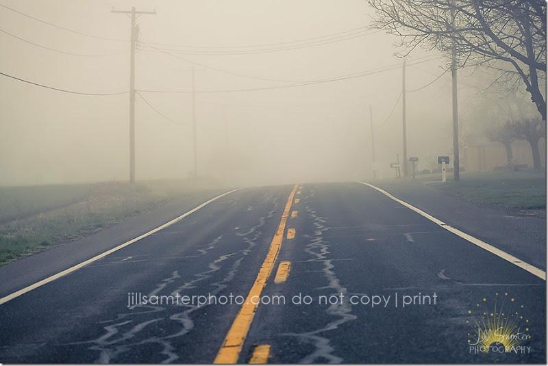 fog-5433